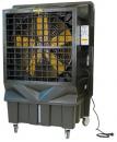 Охладитель воздуха Master BC 220 в Краснодаре